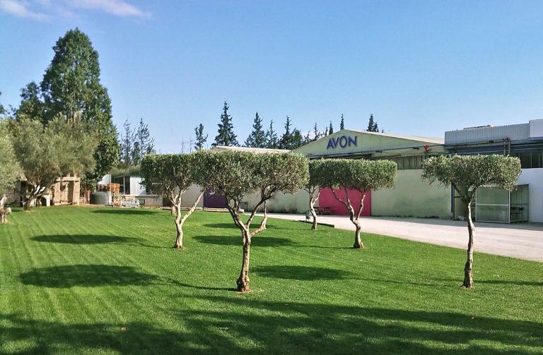 Συντήρηση-Κήπων-Αθήνα 3-Topos Renovation