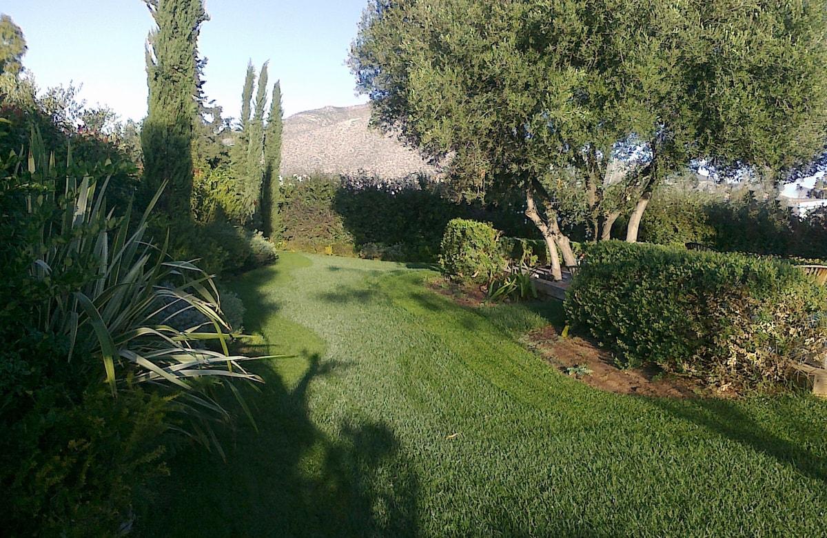 Συντήρηση κήπων Αθήνα-Topos Renovation-5