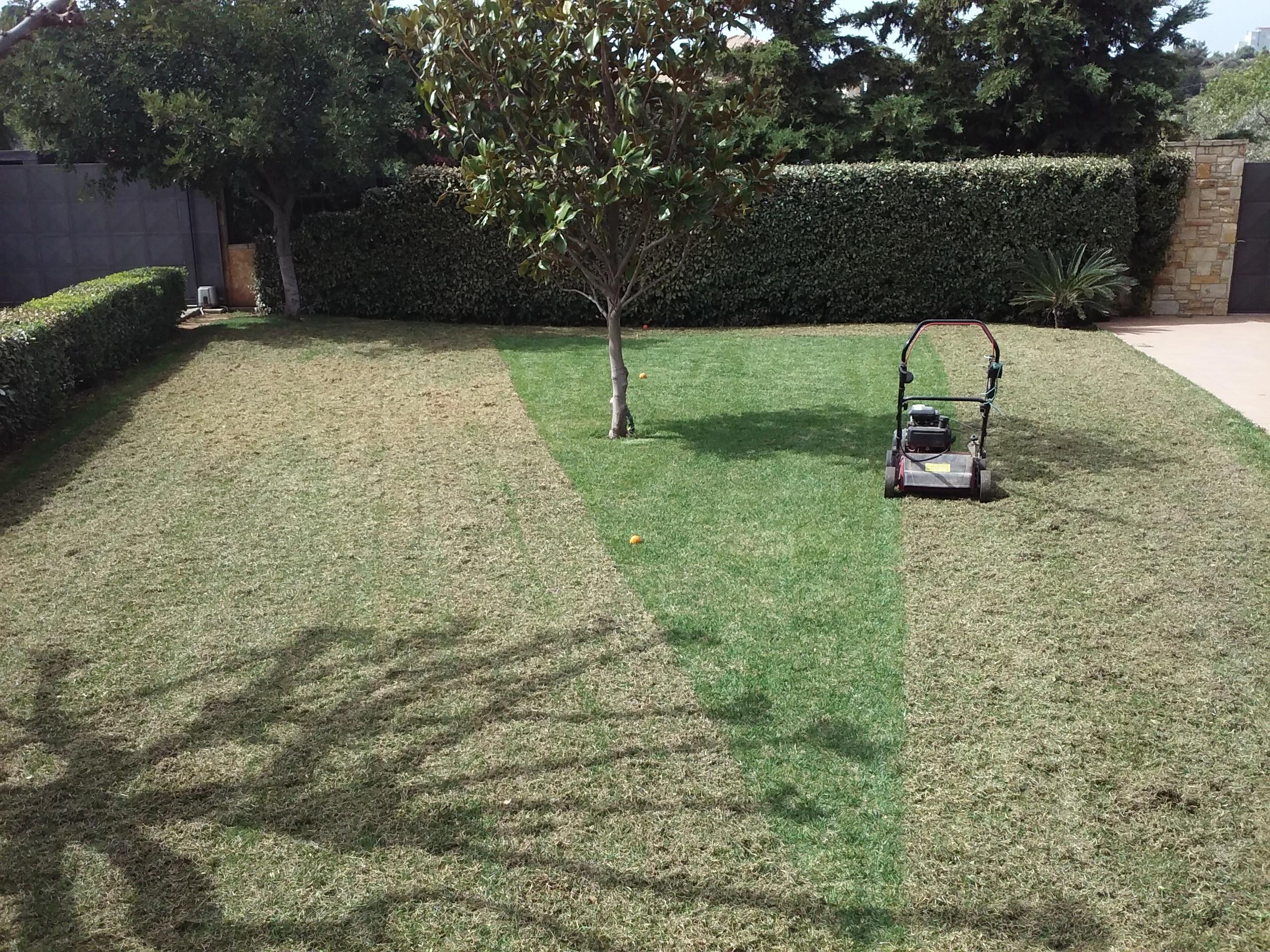 Συντήρηση κήπων-Εξαραίωση χλοοτάπητα-Turf verticutting-Topos Renovation