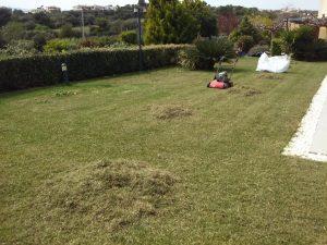 Συντήρηση κήπων-Εξαραίωση χλοοτάπητα-Turf verticutting-Topos Renovation3