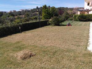 Συντήρηση-κήπων-Εξαραίωση-χλοοτάπητα-Turf-verticutting-Topos-Renovation5