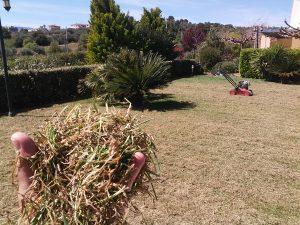 Συντήρηση κήπων-Εξαραίωση χλοοτάπητα-Turf verticutting-Topos Renovation7